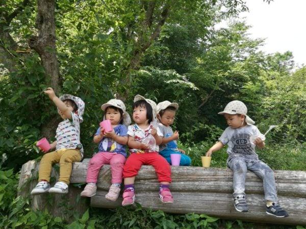 宝塚市きづきの森へアマナ保育園のお散歩